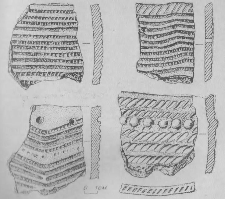 Рис. 2. Керамика поселения Крохалевка-1.