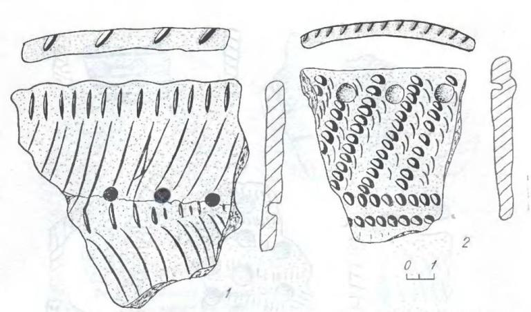 Рис. 3. Фрагменты керамики из комплекса Крохалевка-4 орнаментированные: 1 — прочерчиванием и насечкой; 2 — отступающей лопаточкой и жемчужинами.