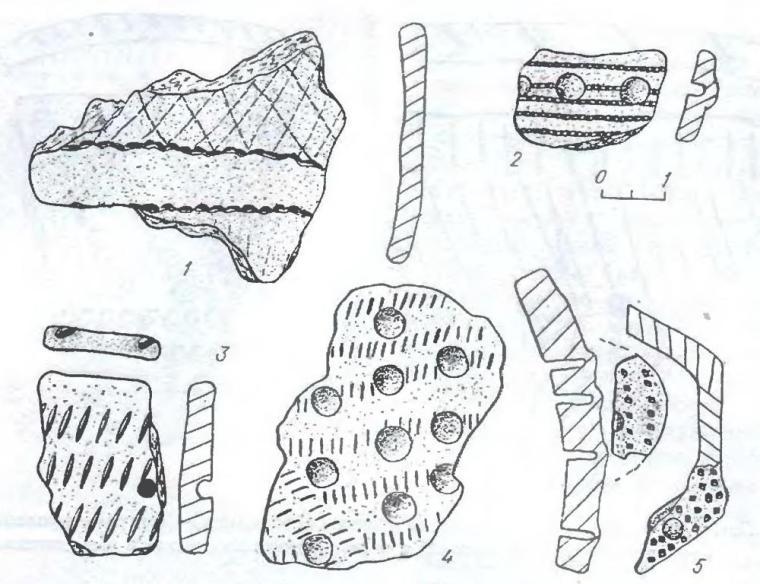 Рис. 4. Виды орнаментации на фрагментах керамики из комплекса Крохалевка-4. 1 — гребенчатые вдавления и отступающая палочка; 2 — отступающая палочка и жемчужины; 3 — овальная насечка горизонтальными рядами; 4 — жемчужины по тонкой насечке; 5 — жемчужины в придонной части и на дне сосуда.