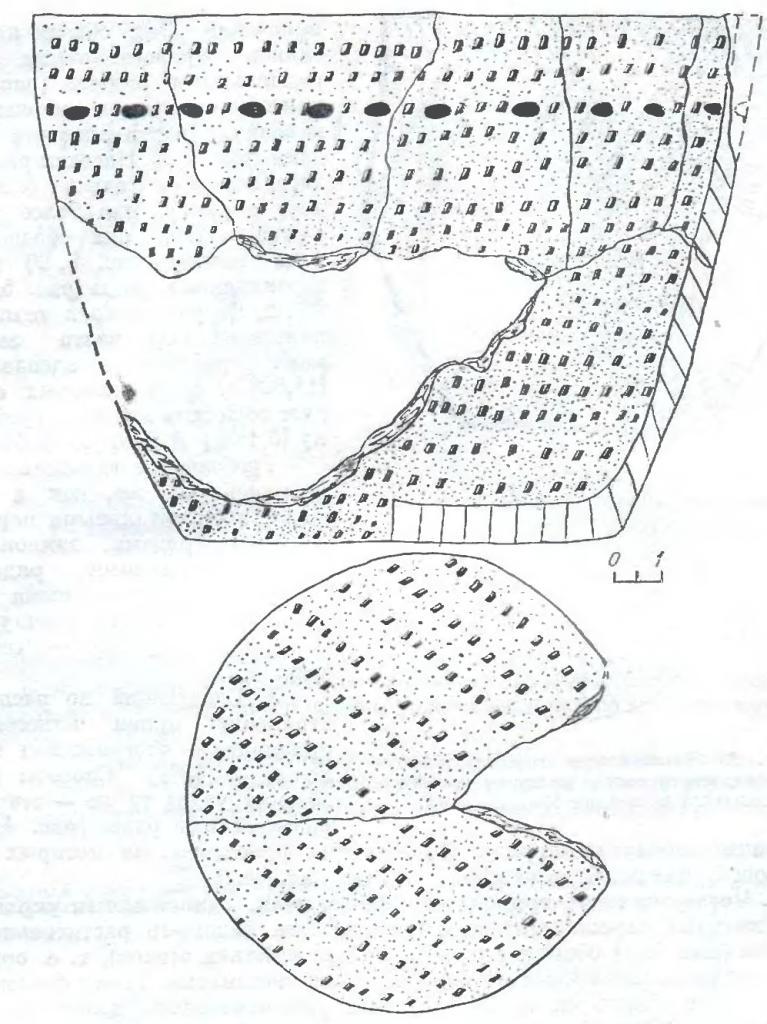 Рис. 1. Реконструкция плоскодонного сосуда керамического комплекса поселения Крохалевка-4.