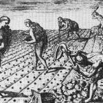 Земледелие у индейцев юго-востока Северной Америки. Старинная гравюра