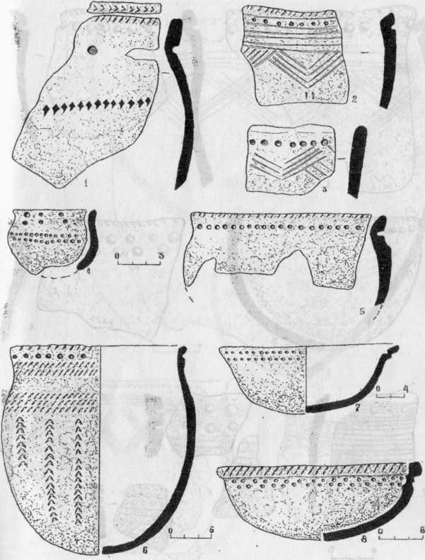 Рис. 1. Керамика I-го типа: Курья-4 - 1; Сосновка-3 - 2, 7; Курья-7 - 3; Курья-2 - 4, 5; Сосновка-4 - б; Лачиново-1 - 8.