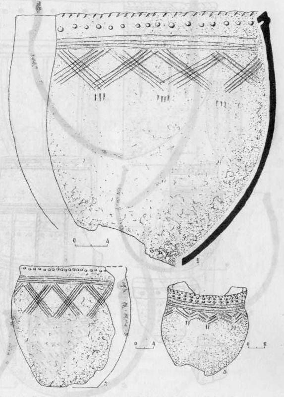 Рис. 3. Керамика 2-го типа. Курья 4а - 1; Сосновка 3 - 2; Курья 7 - 3.