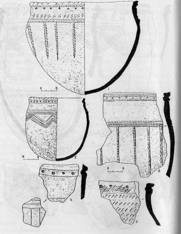 Рис. 4. Керамика З-го типа: Сосновка-4 - 1: Сосновка-3 - 2; Лачиново-1 - 3; Курья-2 - 4; Курья-4 - 5.