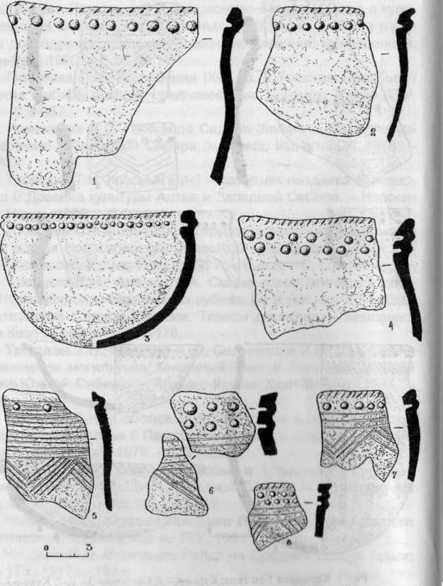 Рис. 2. Керамика 2-го типа: Сосновка-3 - 1,2,5,8; Курья-2 - 3, 4, 6.