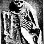 Погребение 7 могильника Лебеди II (фрагмент)