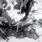 Рис. 16.2. Обнаружение Ледяного человека