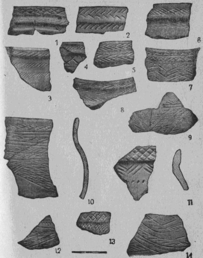 Рис. 4. Керамика межовского типа. Селище Черкаскуль II