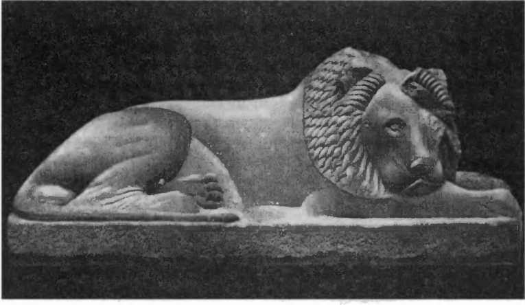 Лев и.3 Дидим