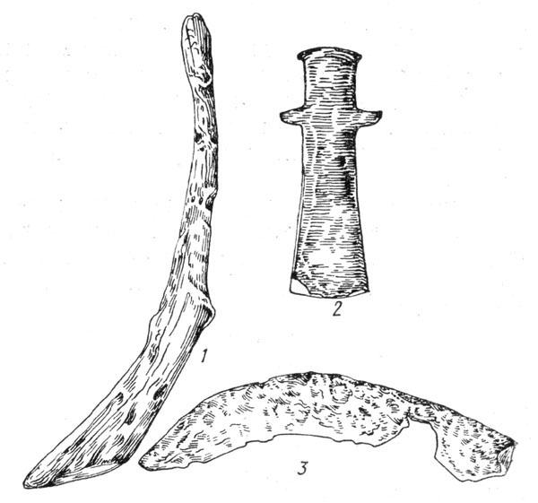 Рис. 69. Деревянный сошник (1), железное тесло (2) и железные серп (3) с Бискупинского городища