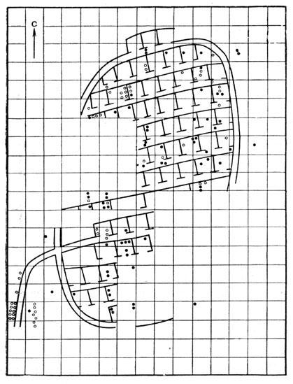Рис. 55. План-схема жилых сооружений Бискупинского городища