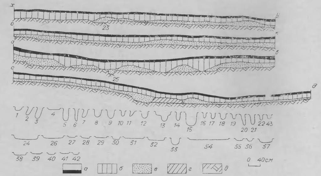 Рис. 4. Стратиграфия раскопа 1977 г. Жилище № 1. а — дерн; б — серый суглинок; в — красноватый суглинок; г — материковый останок; д — материк.