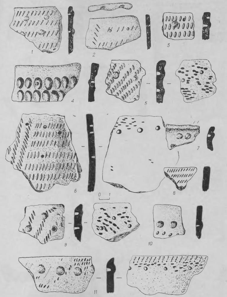 Рис. 6. Фрагменты керамики. 1, 2 — из стоянки Кама-2; 3—11 — из поселения Марково-2.