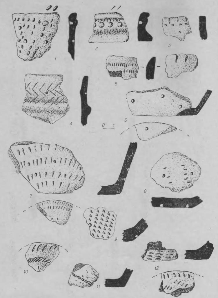 Рис. 7. Фрагменты керамики. 1-10, 12 — из поселения Марково-2; 11 — из стоянки Кама-2.
