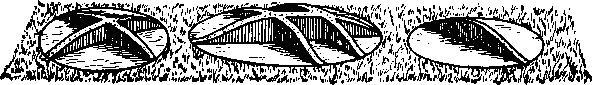 Рис. 11. Раскопки курганов по секторам