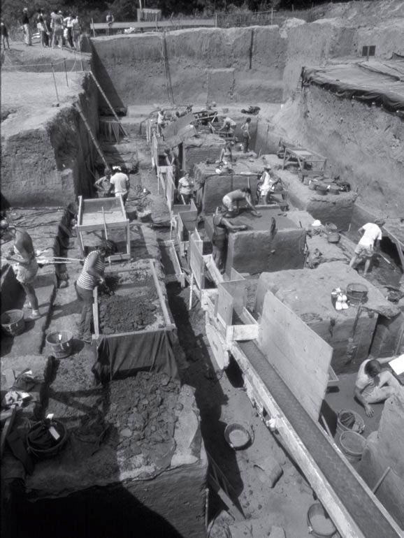 Рис. 9.2. Общий вид раскопок памятника Костер на юге Иллинойса