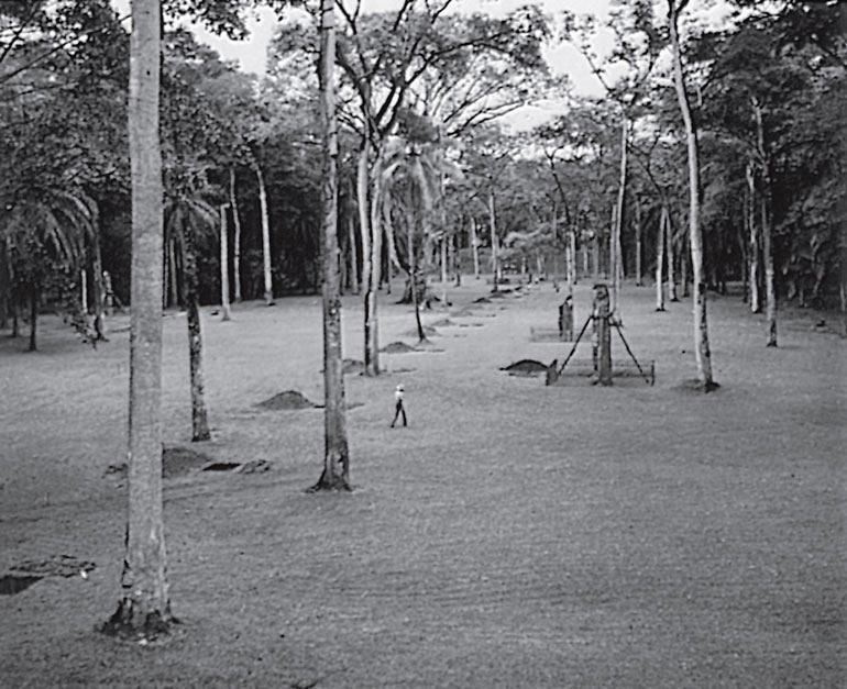Рис. 9.5. Линия проверочных ям в Куиригуа, ритуальном центре майя, выкопанных с интервалом в 15 метров по линиям, соответствующим «сетке» памятника
