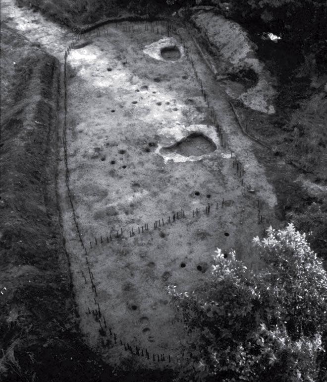 Рис. 9.6. Горизонтальные раскопки открытой территории: длинный вигвам ирокезов на озере Крофорд Лейк, Онтарио. Приблизительно 1400 год н. э. Маленькие столбики отмечают столбы стен дома, очаги и опоры крыши найдены внутри дома