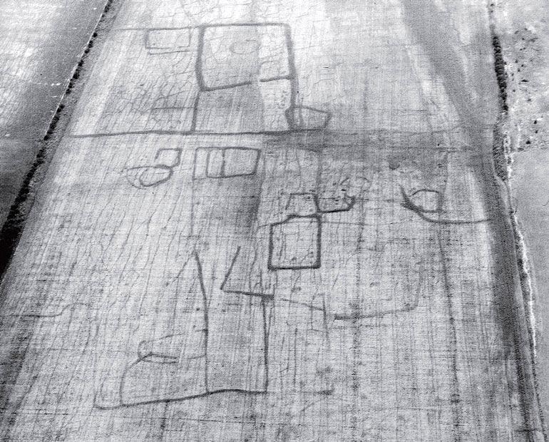 Рис. 8.8. Памятник, отмеченный растительными маркерами, в Торпе, Хантингдошир, Англия. При благоприятных условиях такие маркеры ясно видны с высоты