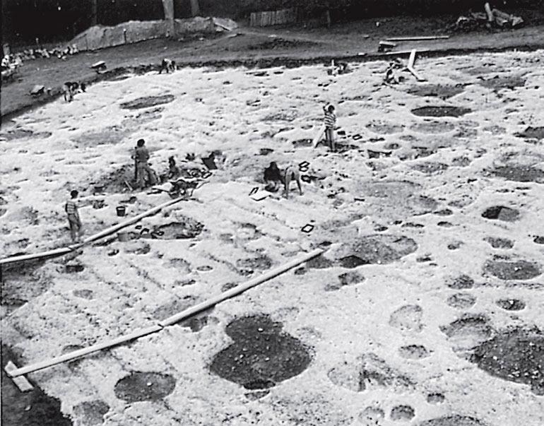 Рис. 9.1. Раскопки по горизонтальной сетке укрепленного холма в Дейнбюри, Англия. Это исследование проводилось в течение многих лет, и его проекты постоянно модифицировались