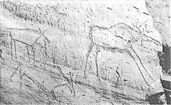 Рис. 79. Минусинская котловина. Усть-Туба III