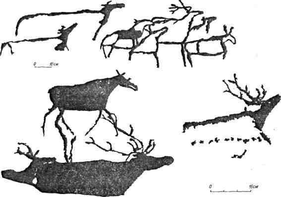 Рис. 95. Минусинская котловина. Черемушный Лог