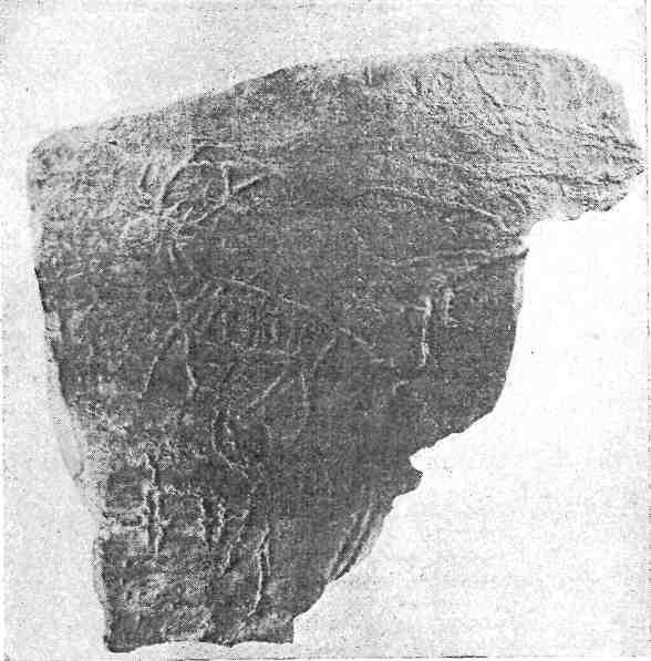 Рис. 97. Минусинская котловина. Черемушный Лог, снимок с пластмассовой копии