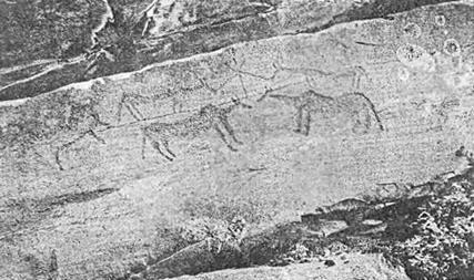 Рис. 69. Минусинская котловина. Тепсей I.16