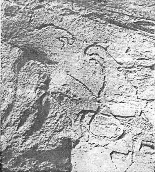 Рис. 62. Минусинская котловина. Ильинская