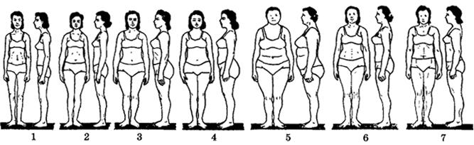 Рис. VII. 2. Типы телосложения женщин (по схеме И.Б. Таланта): 1 - астенический, 2 - стенопластвческий, 3 - пикнический, 4 - Мезопластический, 5 - эврипластический, 6 - субатлетический, 7 - атлетический