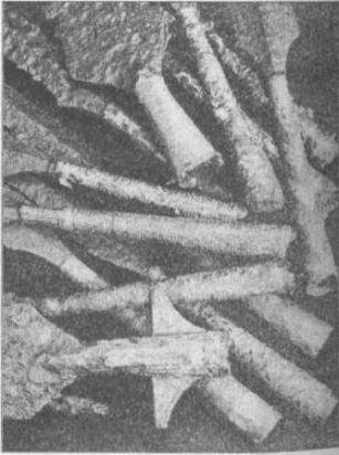 Рис. 77. Наконечники копий эпохи викингов