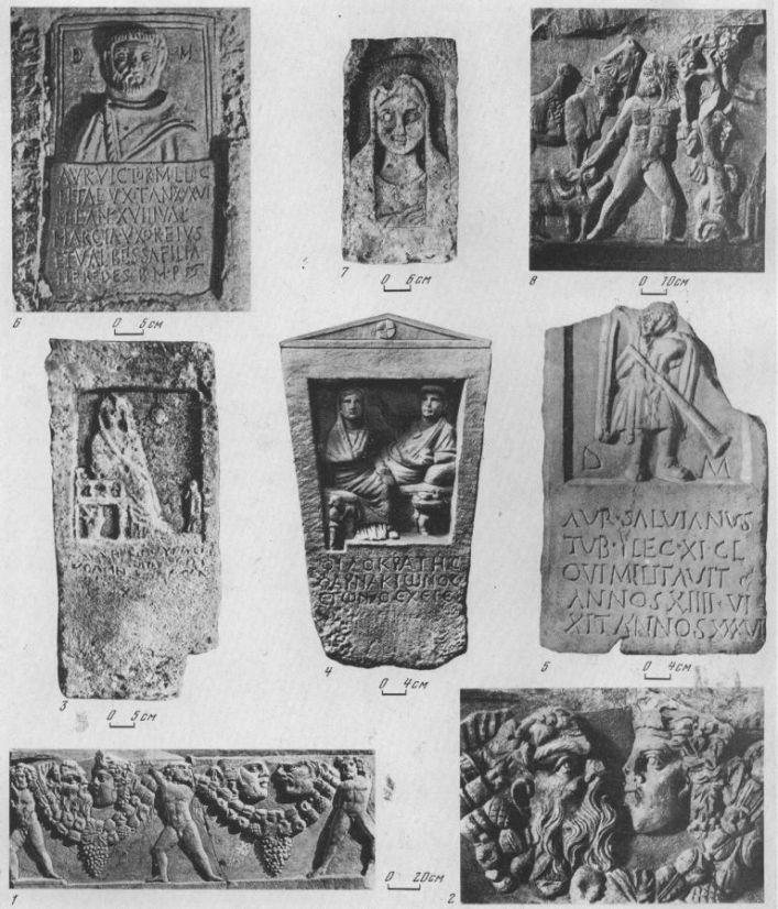 Таблица CV. Херсонесские надгробия и стенки саркофагов, первые века нашей эры 295 1 — стенка саркофага, II в. н. э.; 2 —деталь того же саркофага; 3 — надгробие женщины· первые века нашей эры; 4 — надгробие Филократа, сына Фарнакиона, I в. н. э.; 5--надгробие трубача Аврелия Сальвиана, II в. н. э.; 6 — надгробие солдата Аврелия Виктора, вторая половина II в. н. э.; 7 — надгробие жены Хреста, III—IV вв. н. э.; 8 — плита саркофага с изображением подвигов Геракла, начало II в. н. э. 1, 2, 4, 5, 8 — мрамор; 3,7 — известняк; 6 — мрамор и известняк. Составитель М. М. Кобылина