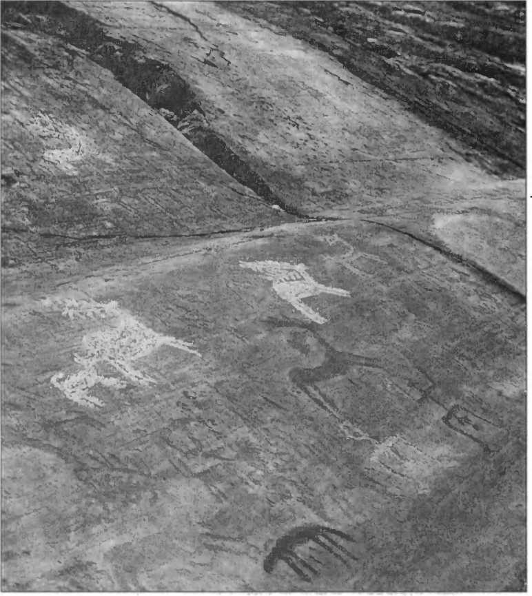 Наскальные изображения Валъкамоника