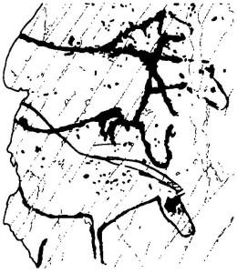 """Рис. 81. """"Трехголовая"""" лошадь, Пенаскоса, Португалия"""