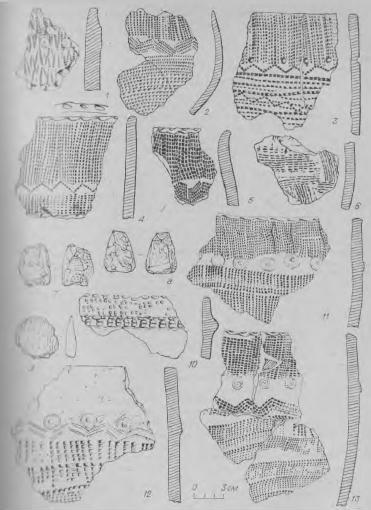 Рис. 3. Поселение Инберень X. Изделия из камня (7—9) и фрагменты керамики (1—6, 10—13).