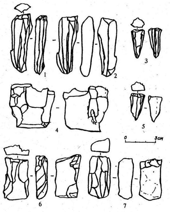 Рис. 3. Плитчатые нуклеусы (1-7)