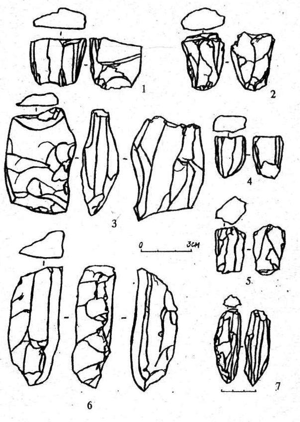 Рис. 4. Нуклеусы: 1-5 - призматические; 6, 7 - призматические с ребром.