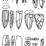 Рис. 6. Нуклеусы (1-7) и продукты «омоложения» нуклеусов (8-11):1-4— карандашевидные нуклеусы; 5-7— конические нуклеусы; 8 — вертикальный скол; 9 — горизонтальным скол; 10 — поперечный скол с частью фронта (контрфронта); 11 — ребристая пластина