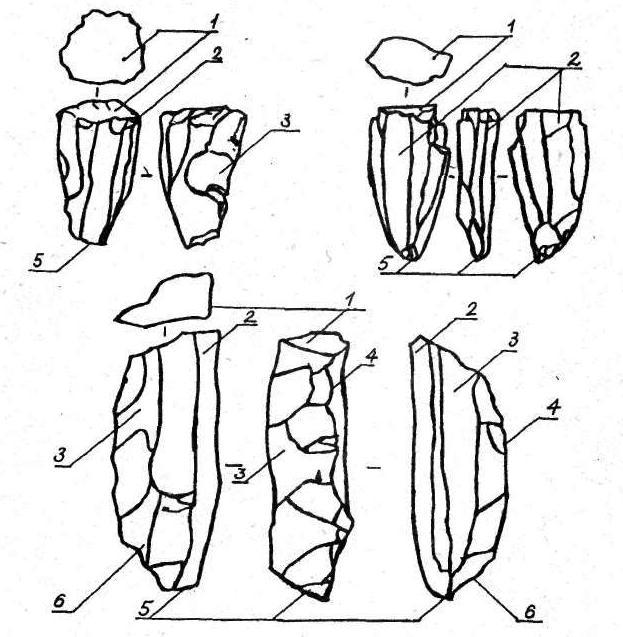 Рис. 2. Нуклеус. Составляющие его элементы: 1 — ударная площадка; 2 — фронт скалывания; 3 — контрфронт; 4 — ребро; 5 — основание; 6 — киль