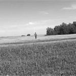 Рис. 1. Курганная группа Объездное-5. Вид с юго-восточной стороны К археологической карте Алтайского края
