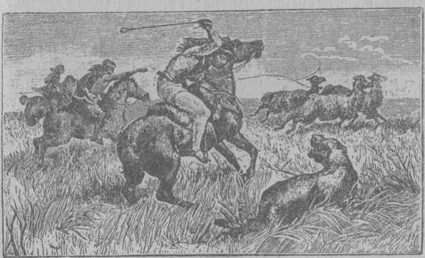Рис. 14. Патагонцы на охоте: один ловит гуанако, другой убивает пуму (кугуара).