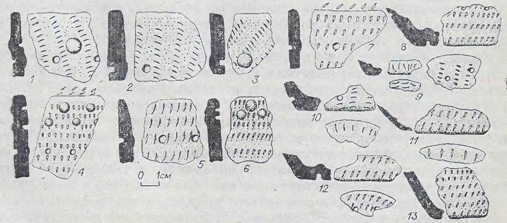 Рис. 11. Фрагменты керамики одиновского типа. Памятник Каргат-6.