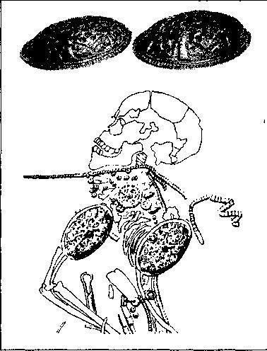 Рис. 95. Пара скандинавских черепаховидных фибул из женского погребения в Питре, Нормандия. IX в. Музей Древностей, Руан