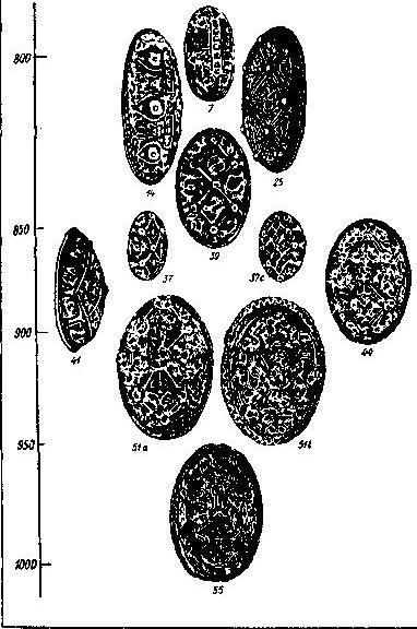 Рис. 94. Типология овальных фибул (типы и датировки по Я. Петерсену и П. Паульсену)