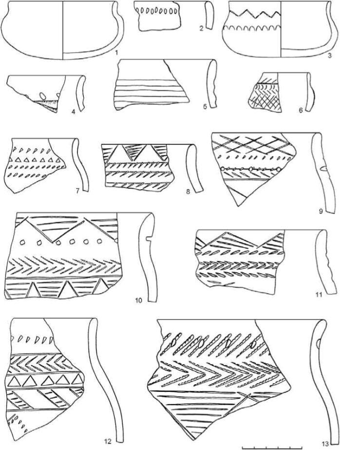 Рис. 4. Поселение Оськино Болото. Пахомовская керамика