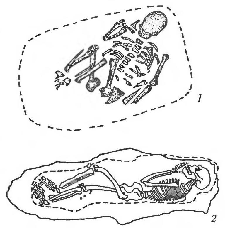 Планы погребений: 1 — Ля Шапель-о-Сен (Франция); 2  — Киик-Коба (Крым, Украина)