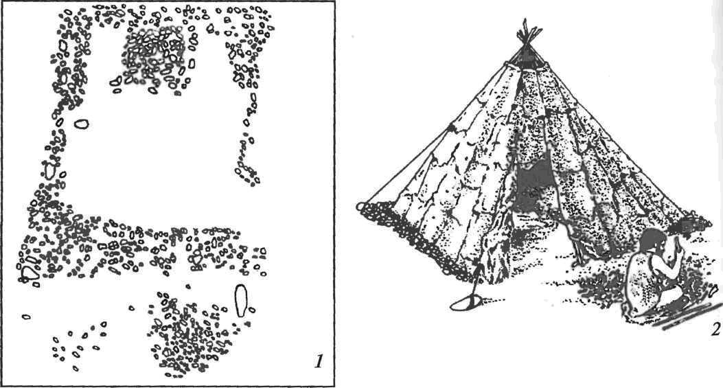 План (1) и реконструкция (2) квадратного мадленского жилища на стоянке Плато Парен (Франция)