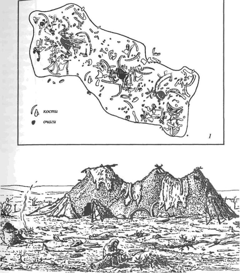 План (1) и реконструкция (2) верхнепалеолитического жилища с тремя очагами на стоянке Пушкари I