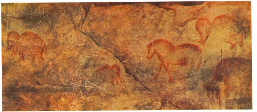 4. Мамонт и лошадь. Живописное изображение на стенах Каповой пещеры. Поздний палеолит.