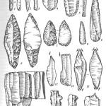 Каменные орудия верхнего палеолита: 1-3 — микропластинки с ретушью; 4, 5 — скребки; 6,7 — наконечники; 8, 9 — острия; 10 — призматический нуклеус со сколотой с него пластиной; 11-13 — резцы; 14, 15 — зубчато-выемчатые орудия; 16 — проколка